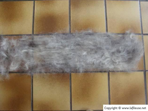 balai rouleau poils de chien