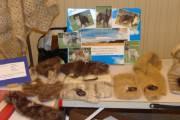 Christelle et son élevage de la Source du Montet