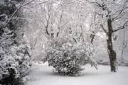 Bloqués par la neige
