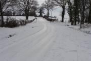 Neige: quelle beauté !